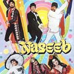 John Jani Janardhan Lyrics from Naseeb