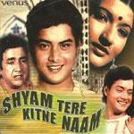 Shyam Tere Kitne Naam - Song