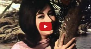 Hum To Tere Aashiq Hain Sadiyon Purane Video