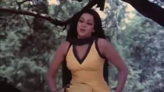 Jo Ho Yaar Apna Video