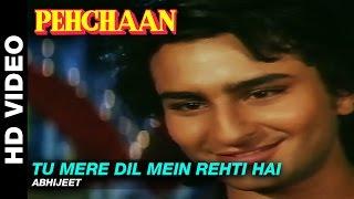 Tu Mere Dil Mein Rehti Hai Video