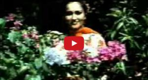 Ye Aankhein Dekh Kar Hum Video