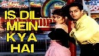 Is Dil Mein Kya Hai Dhadkan Video Song