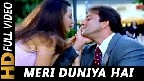 Meri Duniya Hai Tujhme Kahin Video Song