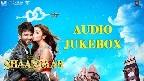 Raita Phail Gaya Video Song