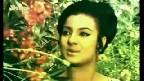 Roz Shaam Aati Thi Magar Aisi Na Thi Video Song