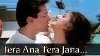Tera Aana Tera Jaana Video Song