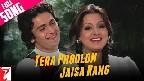 Tera Phoolon Jaisa Rang Video Song