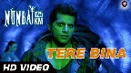 Tere Bina Video Song