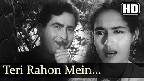 Teri Raahon Mein Khade Hain Dil Thaam Ke Video Song