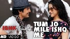 Tum Jo Mile Ishq Mein Video Song