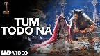 Tum Todo Na Video Song